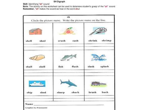 'sh' Digraph Lesson Plan For 1st Grade