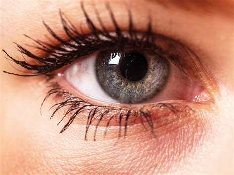 Best Foods For Healthy Eyes — Video Health