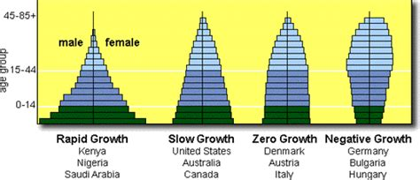 Age Structure Diagram by Ch 14 Population Ecology