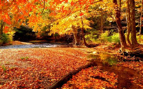 hd autumn beautiful beauty lake hd wallpapers cool