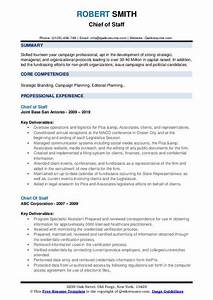 Resume Objective For Business Administration Chief Of Staff Resume Samples Qwikresume