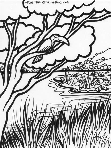 Coloring Background by Forest Trees Coloring Page Coloring Home