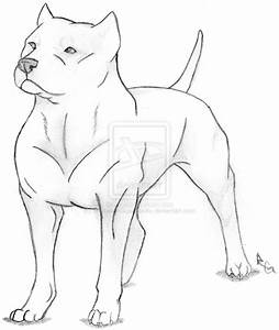 Pitbull Drawings Pit Bull Sketch By Jinxxydinxx Of Bully ...
