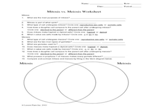 Mitosis Vs Meiosis Worksheet 9th  12th Grade Worksheet  Lesson Planet