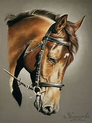 Realistic Horse Drawings