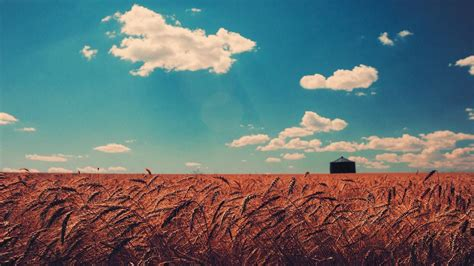 Land R Wallpaper by Wheat Wallpapers Photos And Desktop Backgrounds Up To 8k