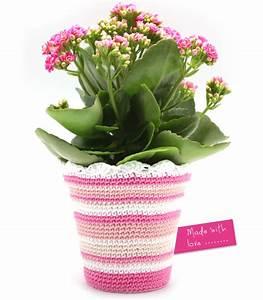 Blumentopf Mit Haken : blumentopf h keln stricken und h keln ~ Watch28wear.com Haus und Dekorationen