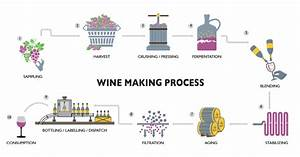 Wine Making Cheat Sheet By Davidpol - Download Free From Cheatography