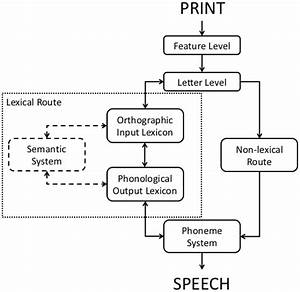 Frontiers | Reading Aloud: Discrete Stage(s) Redux ...
