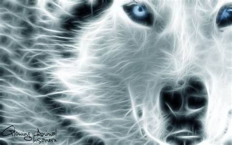Glowing Animal Wallpaper - glowing animal by ihsaneex on deviantart