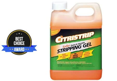 Best Paint Stripper  Latest Detailed Reviews