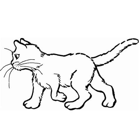 coloriage chat a imprimer gratuit