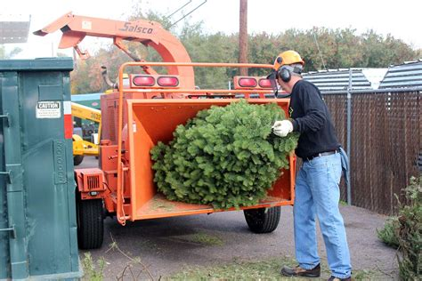 waste management christmas trees works tree recycling