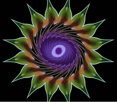 Iris Flickr Animated Experiment Eye