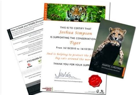 Adopt An Animal  Ee  Gift Ee   Pack  Ee  Gift Ee   Ftempo