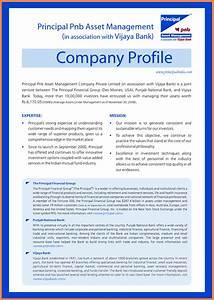 Introduction Letter For Job Sample 7 Brief Company Profile Sample Company Letterhead