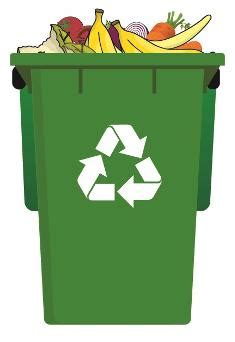 swansea food waste collection