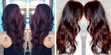 cool hair color ideas  brunettes