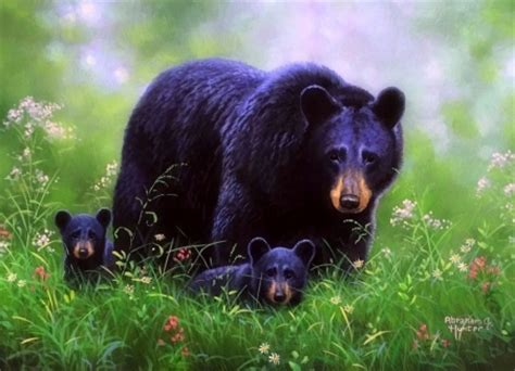 Summer Animal Wallpaper - summer stroll bears animals background wallpapers on