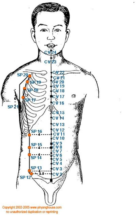 acupuncture grossesse si e 271 best meridians energy pathways images on