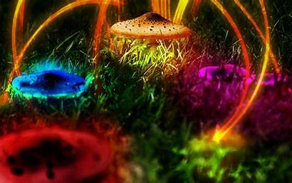 Mushrooms Trippy Neon Hipwallpaper Multicolor Psychedelic Photomanipulation