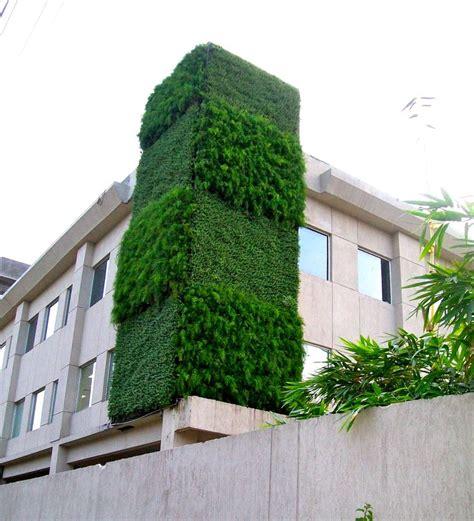 green wall  delhi india vertical gardens wall