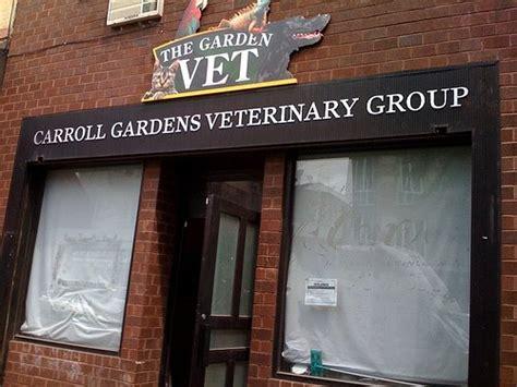 carroll gardens vet new vet in carroll gardens doggie academy