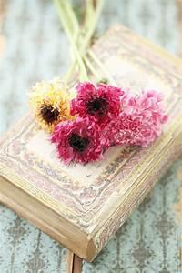 Antique Books And Flowers | www.pixshark.com - Images ...