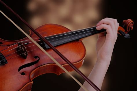 Private Viola Lessons & Teachers For Beginners