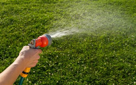 watering  lawn lawn care  sprinkler learning