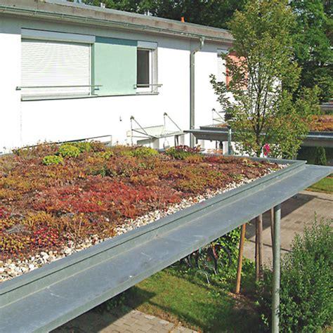 Dachbegruenung Pflanzen Fuer Die Extensivbegruenung by Gr 252 Ndach Wertet Garage Und Carport Auf Energie Fachberater