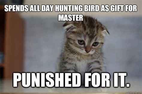 community post   sad kittens