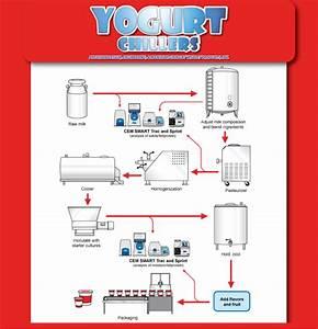 Yogurt Process