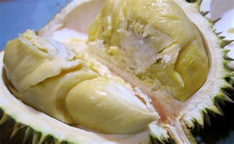 durian kupas by ucok durian serba serbi archives ucok durian medan