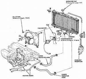 Honda Accord U201988 Radiator Diagram And Schematics  U2013 Circuit