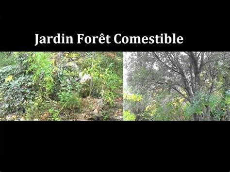 le jardin for 234 t comestible permaculture agro 233 cologie etc