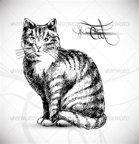 Cat Drawings Template  13+ Free Pdf Documents Format