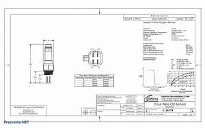 Unique Wiring Diagram Worcester Bosch  Diagrams