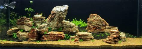 aquascaping with rocks rocks aqua rebell