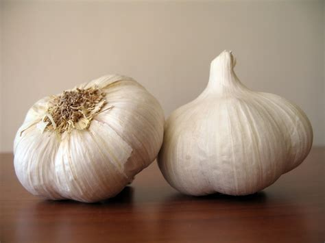clove of garlic 4 easy ways to use garlic in your meals dish by dish