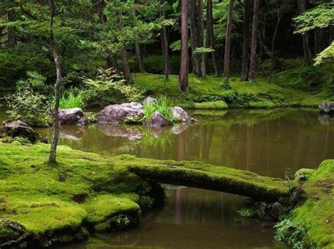zen garden designs philosophic japanese moss gardens kyoto backyard ji pond japan saiho forest bridges water bridge temple