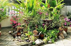 11 Most Essential Container Garden Design Tips Designing