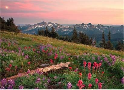 Desktop Natural Scenery Wallpapers Nature Scenes Powerpoint