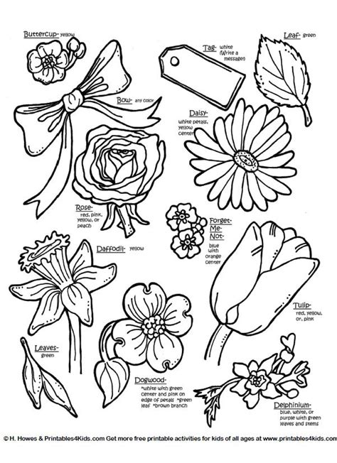 Botanical flowers with names : Printables for Kids free