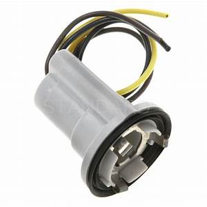 Standard? hp handypack parking light bulb socket