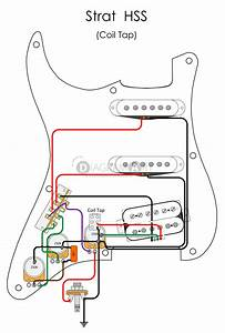 Electric Guitar Wiring  Strat Hss  Coil Tap   Electric