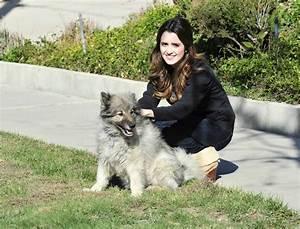 laura marano walking her dog in los angeles 02 10 2016