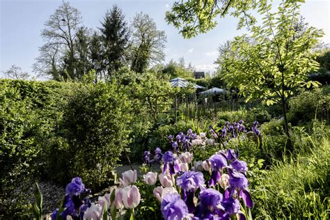 Der Garten Hermann by Der Garten Hermann Hesse Ferdinand Graf Luckner