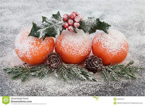Christmas Fruit Decoration Royalty Free Stock Photography