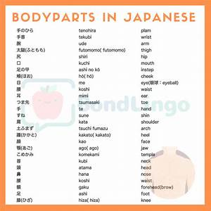 Bodyparts In Japanese